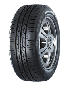 205/55R16 ROADSHINE RS907 91V